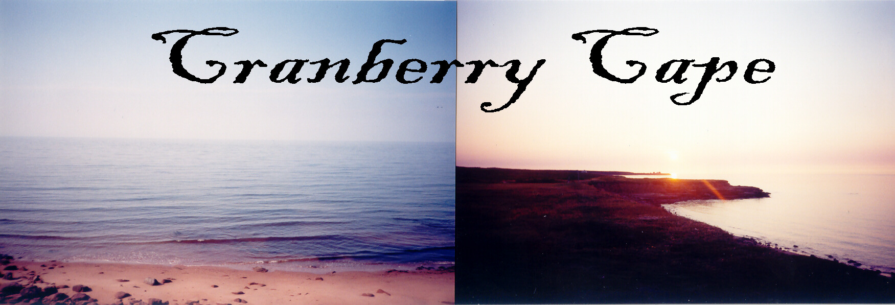 Cranberry Cape header